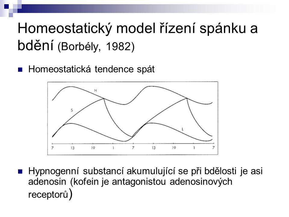 Homeostatický model řízení spánku a bdění (Borbély, 1982) Homeostatická tendence spát Hypnogenní substancí akumulující se při bdělosti je asi adenosin (kofein je antagonistou adenosinových receptorů )