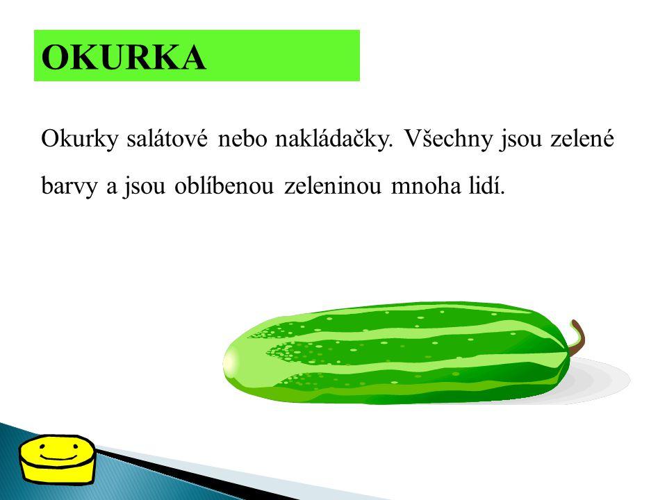 OKURKA Okurky salátové nebo nakládačky. Všechny jsou zelené barvy a jsou oblíbenou zeleninou mnoha lidí.