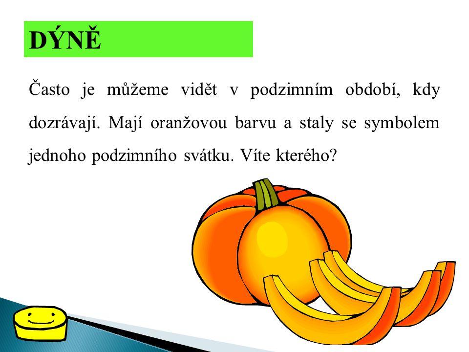 DÝNĚ Často je můžeme vidět v podzimním období, kdy dozrávají. Mají oranžovou barvu a staly se symbolem jednoho podzimního svátku. Víte kterého?