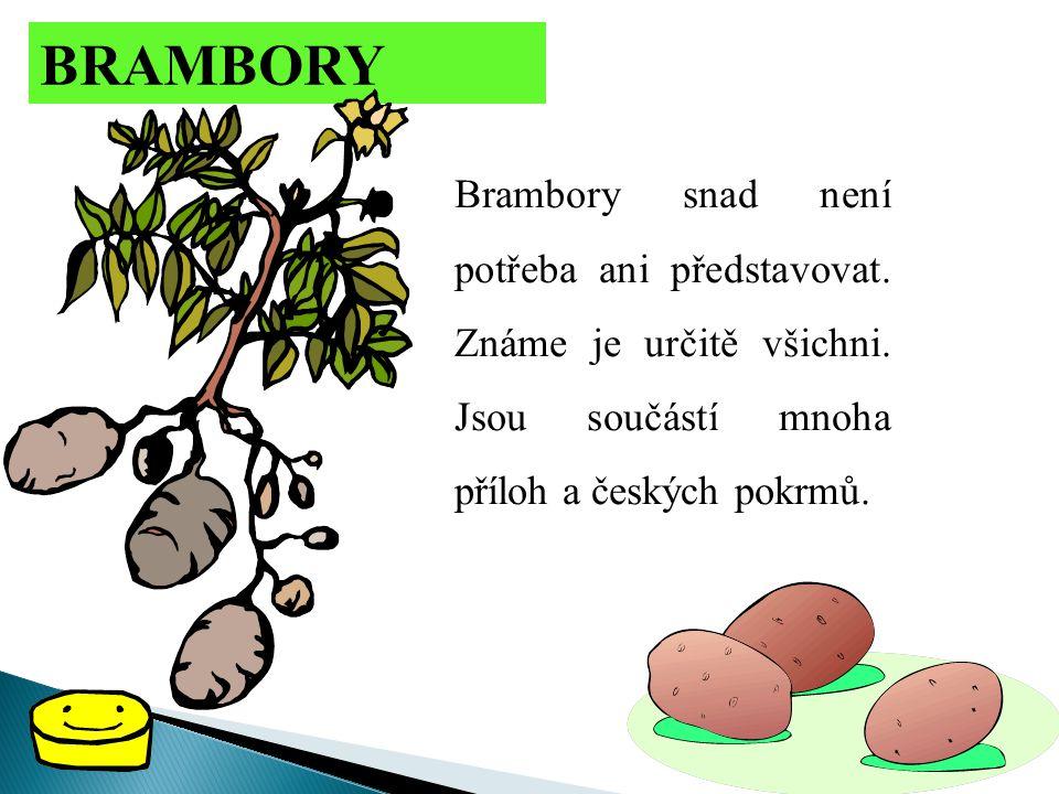 BRAMBORY Brambory snad není potřeba ani představovat. Známe je určitě všichni. Jsou součástí mnoha příloh a českých pokrmů.