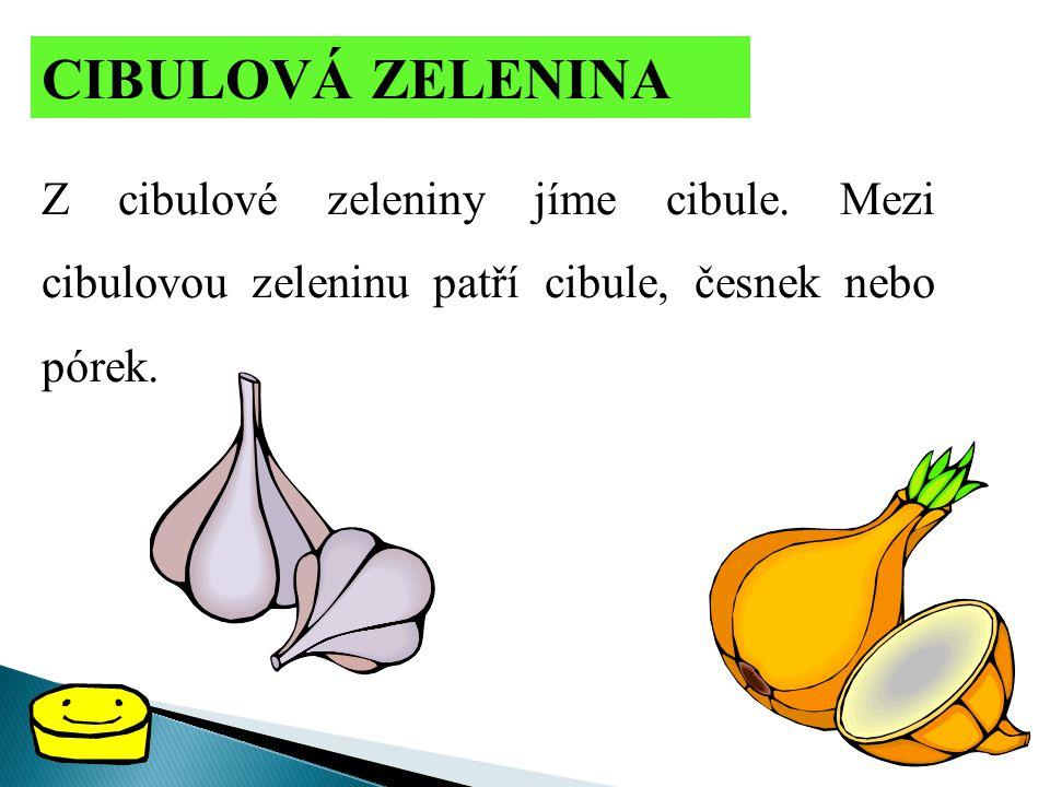 CIBULOVÁ ZELENINA Z cibulové zeleniny jíme cibule. Mezi cibulovou zeleninu patří cibule, česnek nebo pórek.