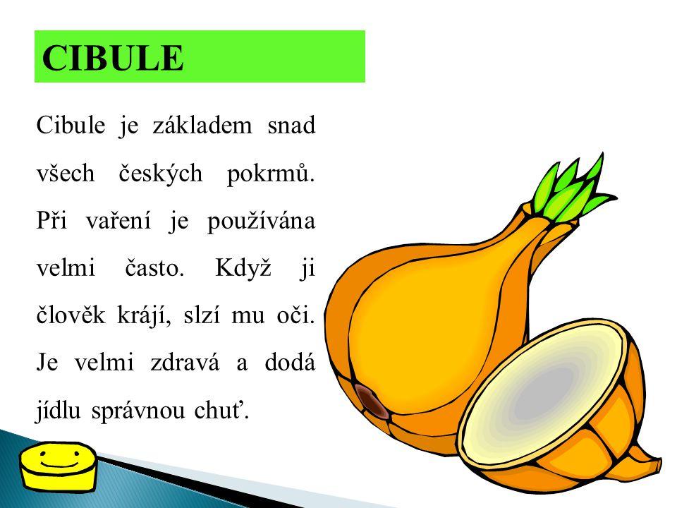 CIBULE Cibule je základem snad všech českých pokrmů. Při vaření je používána velmi často. Když ji člověk krájí, slzí mu oči. Je velmi zdravá a dodá jí
