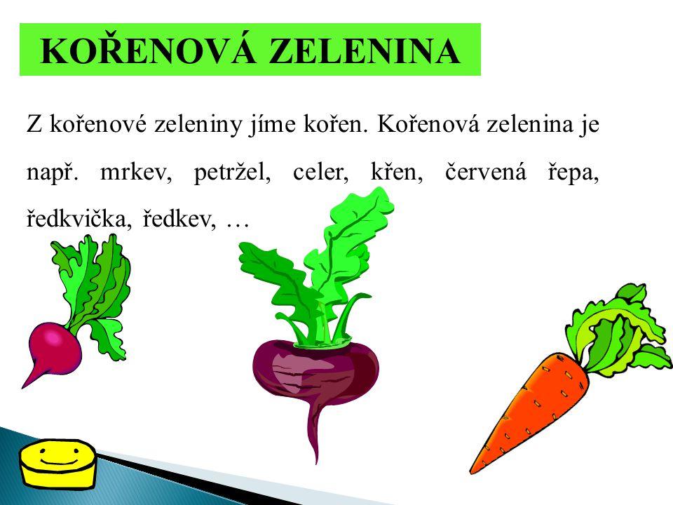 KOŘENOVÁ ZELENINA Z kořenové zeleniny jíme kořen. Kořenová zelenina je např. mrkev, petržel, celer, křen, červená řepa, ředkvička, ředkev, …