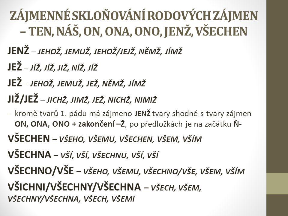 ZÁJMENNÉ SKLOŇOVÁNÍ RODOVÝCH ZÁJMEN – TEN, NÁŠ, ON, ONA, ONO, JENŽ, VŠECHEN JENŽ – JEHOŽ, JEMUŽ, JEHOŽ/JEJŽ, NĚMŽ, JÍMŽ JEŽ – JÍŽ, JÍŽ, JIŽ, NÍŽ, JÍŽ
