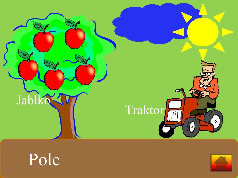 Traktor Pole Jablko