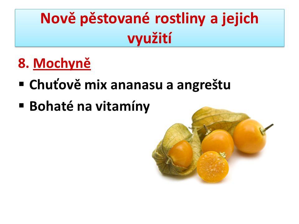 Nově pěstované rostliny a jejich využití 8. Mochyně  Chuťově mix ananasu a angreštu  Bohaté na vitamíny