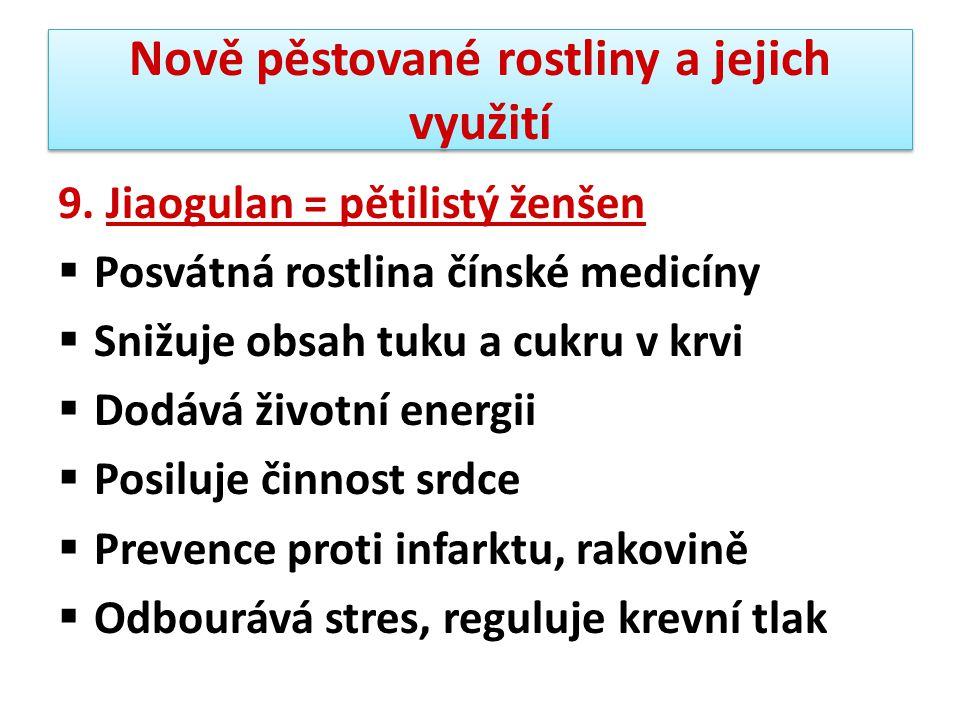 Nově pěstované rostliny a jejich využití 9. Jiaogulan = pětilistý ženšen  Posvátná rostlina čínské medicíny  Snižuje obsah tuku a cukru v krvi  Dod