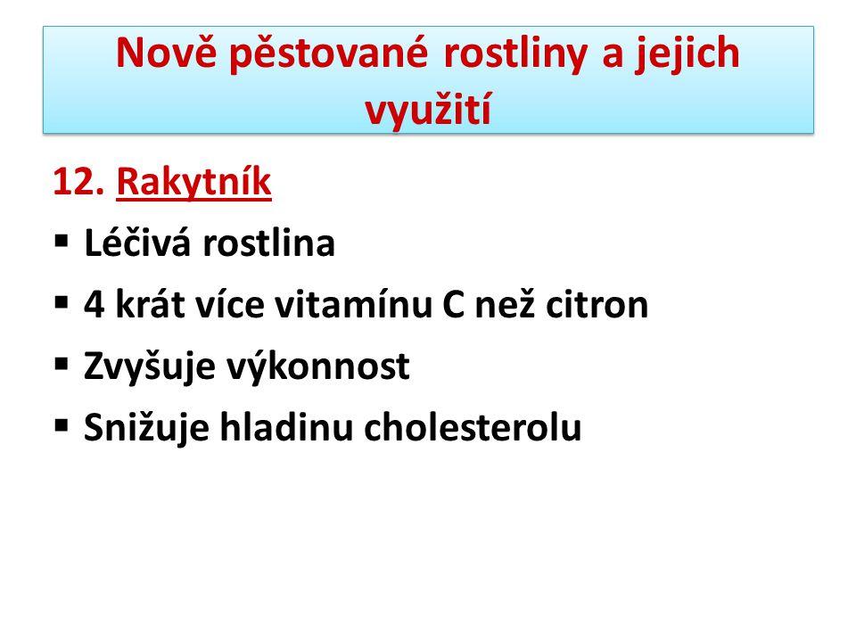 Nově pěstované rostliny a jejich využití 12. Rakytník  Léčivá rostlina  4 krát více vitamínu C než citron  Zvyšuje výkonnost  Snižuje hladinu chol