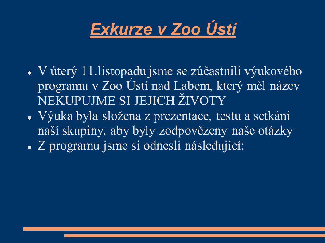 Exkurze v Zoo Ústí V úterý 11.listopadu jsme se zúčastnili výukového programu v Zoo Ústí nad Labem, který měl název NEKUPUJME SI JEJICH ŽIVOTY Výuka byla složena z prezentace, testu a setkání naší skupiny, aby byly zodpovězeny naše otázky Z programu jsme si odnesli následující: