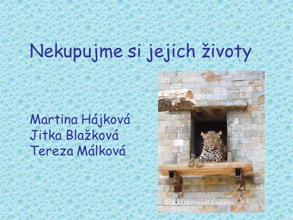Nekupujme si jejich životy Martina Hájková Jitka Blažková Tereza Málková