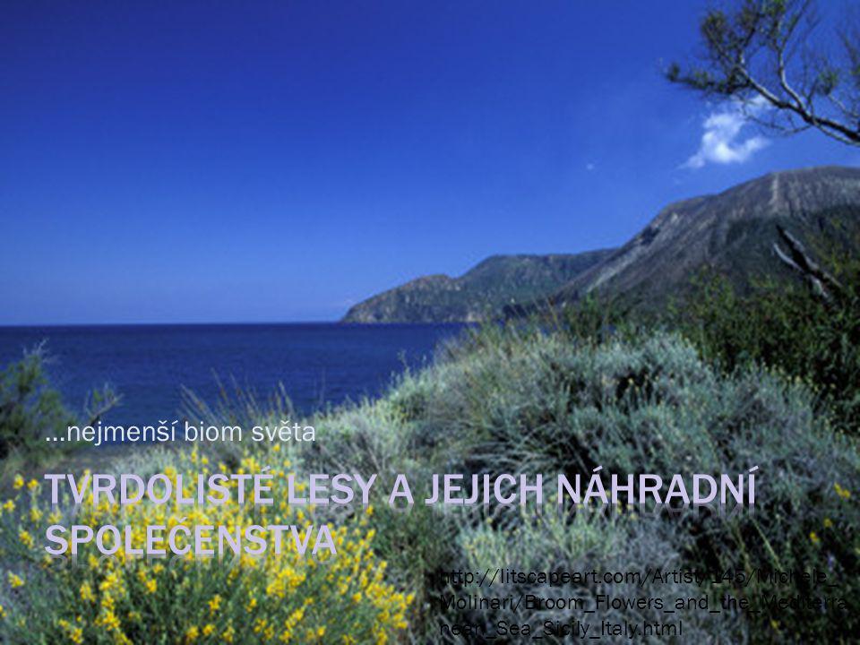 Oblast Středomoří Oblast Kalifornie http://en.wikipedia.org/wiki/Mediterranean_ climate Chile Západní Austrálie