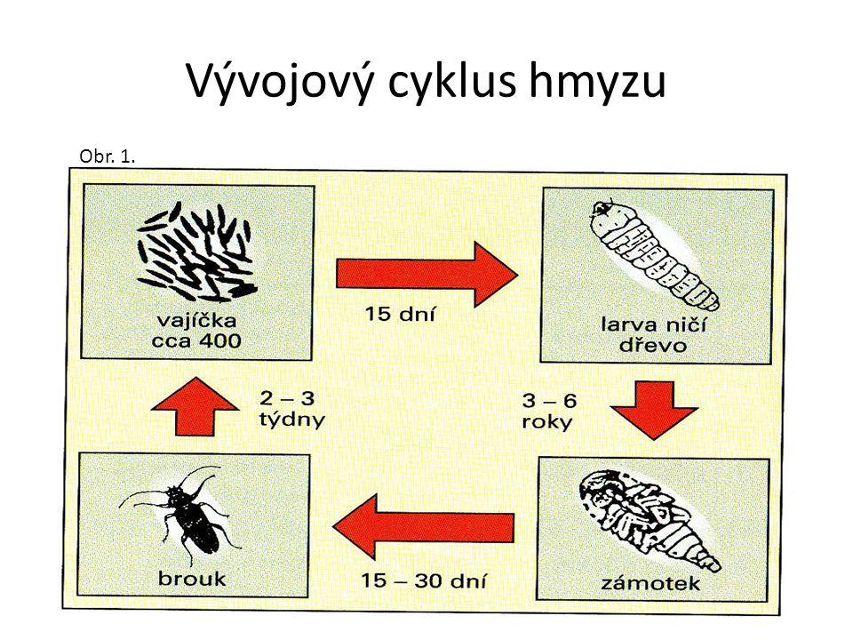 Pilořitka Obr. 6.