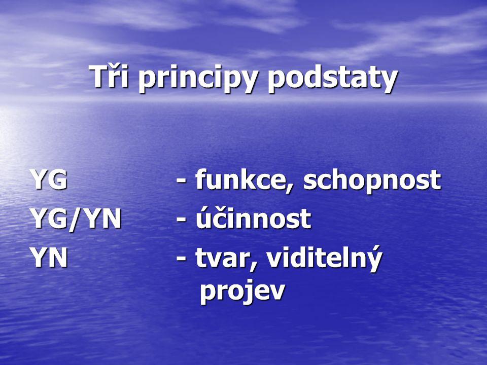 Tři principy podstaty YG- funkce, schopnost YG/YN- účinnost YN- tvar, viditelný projev
