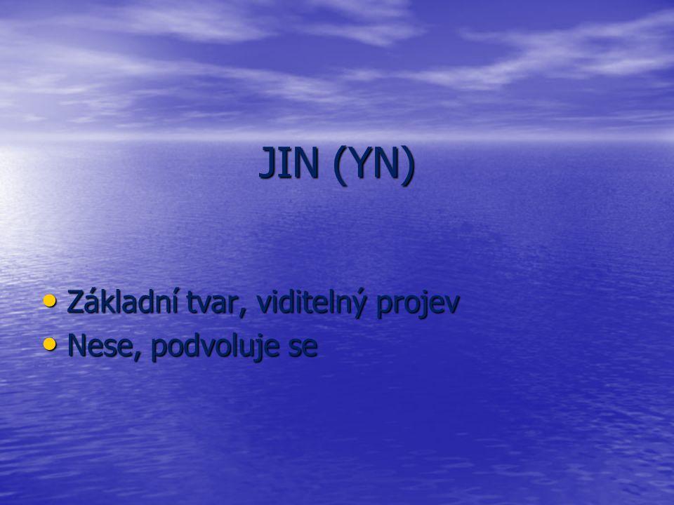 JIN (YN) Základní tvar, viditelný projev Základní tvar, viditelný projev Nese, podvoluje se Nese, podvoluje se