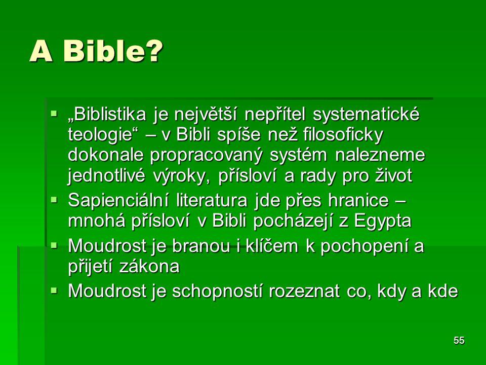 55 A Bible.