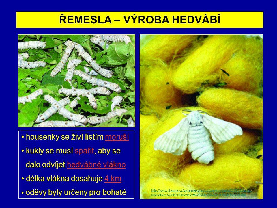 ŘEMESLA – VÝROBA HEDVÁBÍ housenky se živí listím moruší kukly se musí spařit, aby se dalo odvíjet hedvábné vlákno délka vlákna dosahuje 4 km oděvy byl