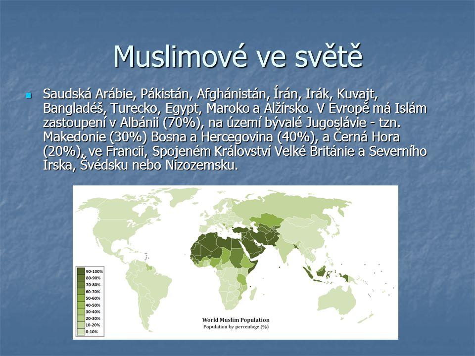 Muslimové ve světě Saudská Arábie, Pákistán, Afghánistán, Írán, Irák, Kuvajt, Bangladéš, Turecko, Egypt, Maroko a Alžírsko.