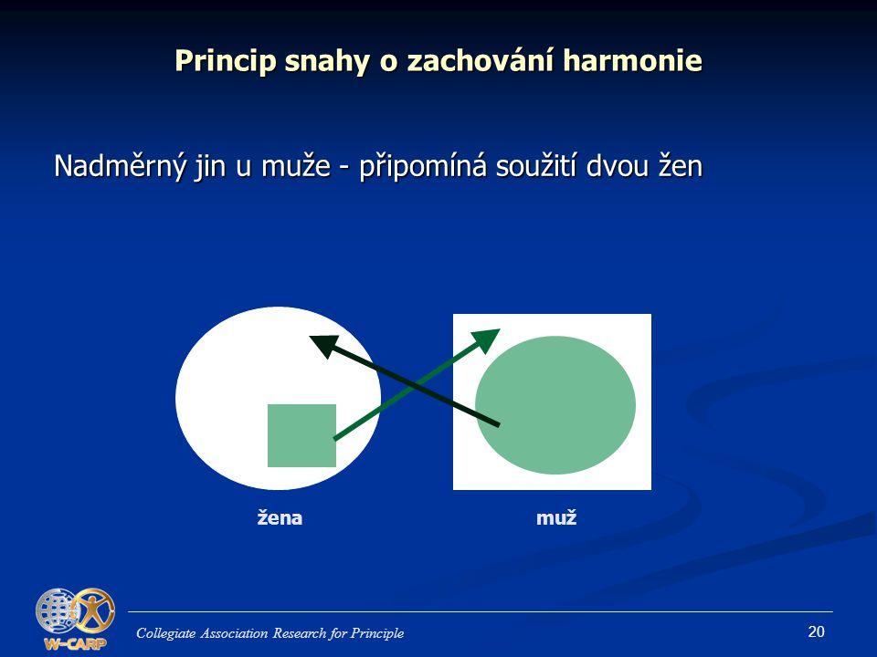 20 Princip snahy o zachování harmonie Nadměrný jin u muže - připomíná soužití dvou žen Collegiate Association Research for Principle ženamuž