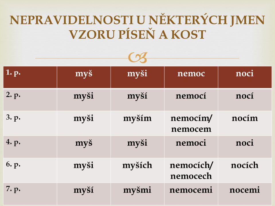  1. p. myšmyšinemocnoci 2. p. myšimyšínemocínocí 3. p. myšimyšímnemocím/ nemocem nocím 4. p. myšmyšinemocinoci 6. p. myšimyšíchnemocích/ nemocech noc
