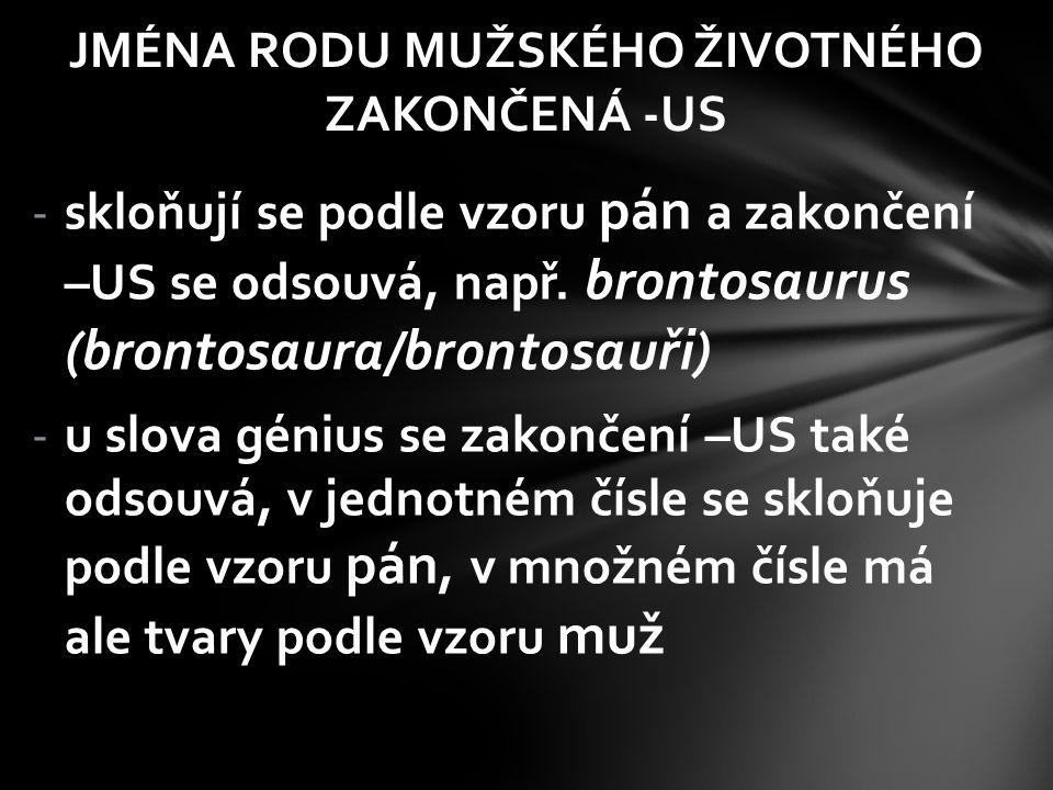 -skloňují se podle vzoru pán a zakončení –US se odsouvá, např. brontosaurus (brontosaura/brontosauři) -u slova génius se zakončení –US také odsouvá, v