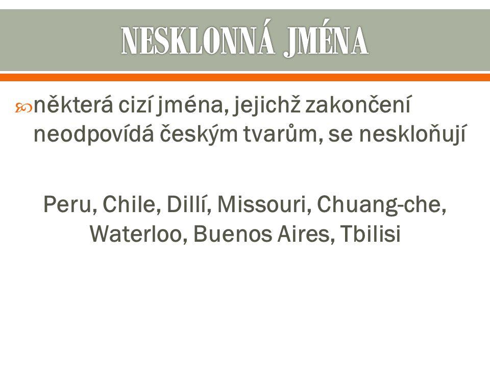  některá cizí jména, jejichž zakončení neodpovídá českým tvarům, se neskloňují Peru, Chile, Dillí, Missouri, Chuang-che, Waterloo, Buenos Aires, Tbilisi
