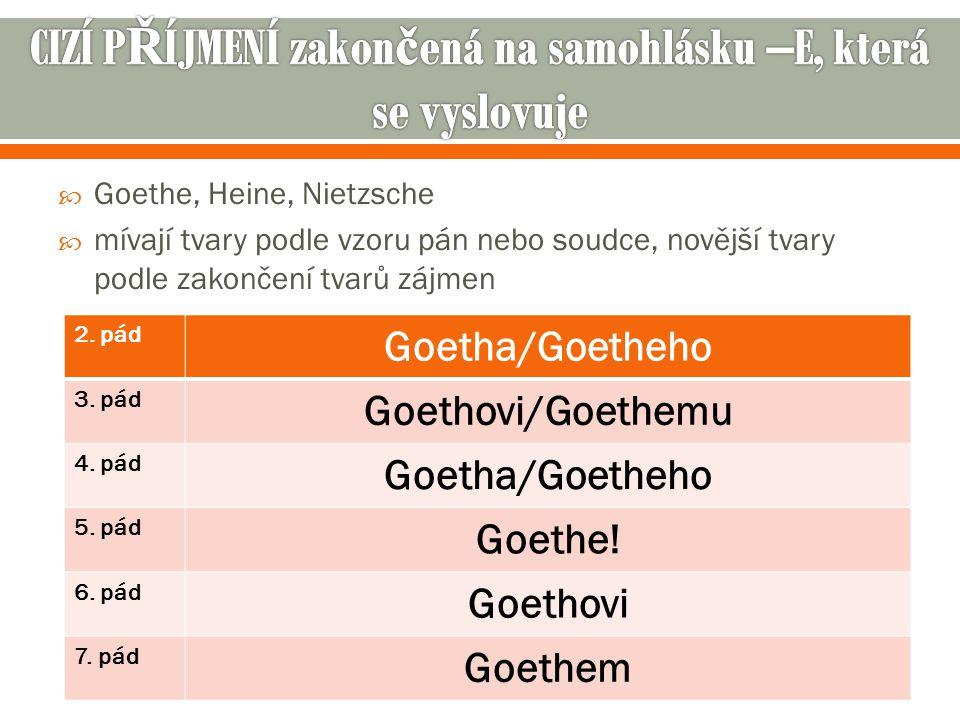  Goethe, Heine, Nietzsche  mívají tvary podle vzoru pán nebo soudce, novější tvary podle zakončení tvarů zájmen 2.