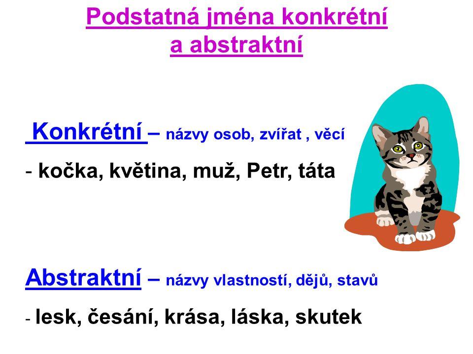 Podstatná jména konkrétní a abstraktní Konkrétní – názvy osob, zvířat, věcí - kočka, květina, muž, Petr, táta Abstraktní – názvy vlastností, dějů, sta