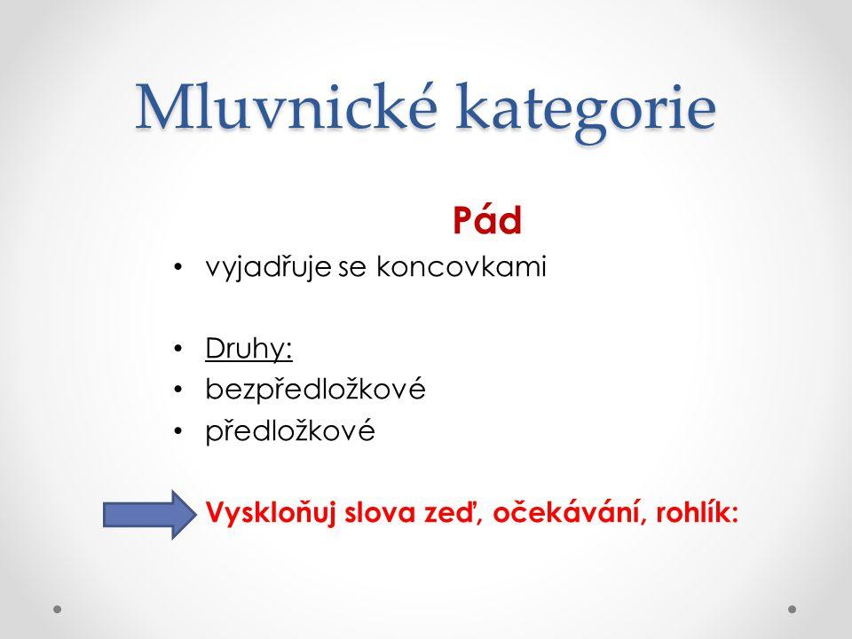 Mluvnické kategorie Číslo jednotné množné dvojné (duál) pro označení dvojí skutečnosti – ve staré češtině, dodnes duálové tvary – oči, uši, nohy, ramena, kolena, prsa zvláštní skupiny podstatných jmen – mluvnické číslo není totožné se skutečným počtem: hromadná – listí, prádlo, studenstvo pomnožná – kalhoty, kamna, ústa látková – voda, krev, cukr