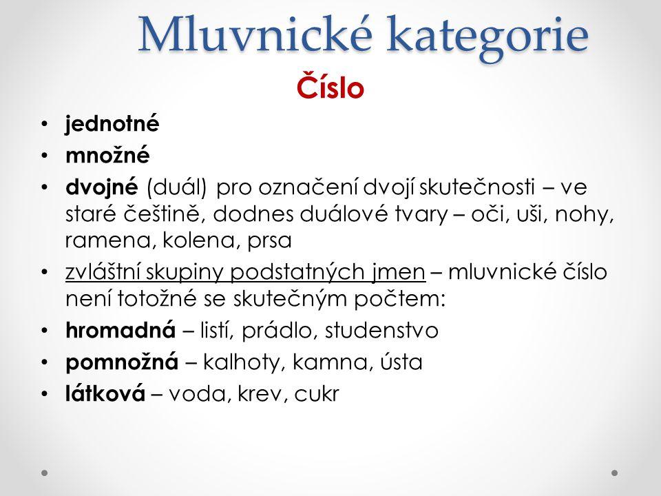 Mluvnické kategorie Číslo jednotné množné dvojné (duál) pro označení dvojí skutečnosti – ve staré češtině, dodnes duálové tvary – oči, uši, nohy, rame