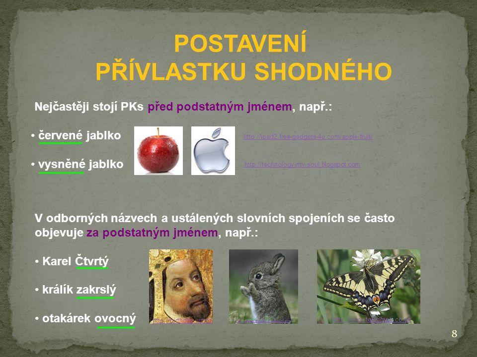 POSTAVENÍ PŘÍVLASTKU SHODNÉHO Nejčastěji stojí PKs před podstatným jménem, např.: červené jablko vysněné jablko http://technology-my-soul.blogspot.com http://ipad2.free-gadgets-4u.com/apple-fruit/ V odborných názvech a ustálených slovních spojeních se často objevuje za podstatným jménem, např.: Karel Čtvrtý králík zakrslý otakárek ovocný http://www.telegraph.co.uk http://birthday.wz.cz 8 http://petsavailable4us.blogspot.com