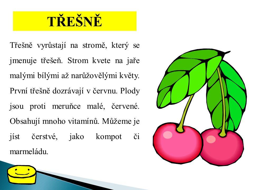 TŘEŠNĚ Třešně vyrůstají na stromě, který se jmenuje třešeň. Strom kvete na jaře malými bílými až narůžovělými květy. První třešně dozrávají v červnu.