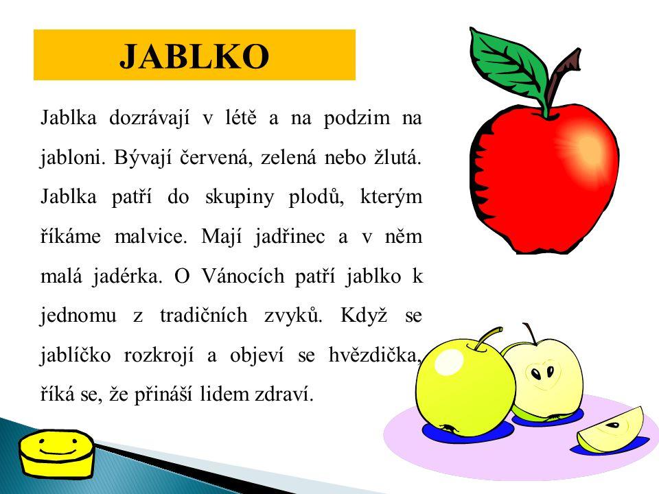 JABLKO Jablka dozrávají v létě a na podzim na jabloni. Bývají červená, zelená nebo žlutá. Jablka patří do skupiny plodů, kterým říkáme malvice. Mají j