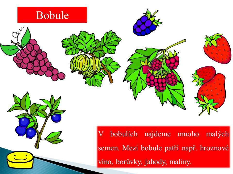Bobule V bobulích najdeme mnoho malých semen. Mezi bobule patří např. hroznové víno, borůvky, jahody, maliny.