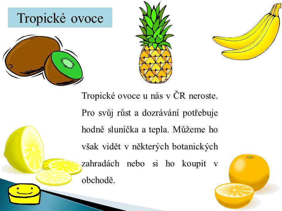 Tropické ovoce Tropické ovoce u nás v ČR neroste. Pro svůj růst a dozrávání potřebuje hodně sluníčka a tepla. Můžeme ho však vidět v některých botanic