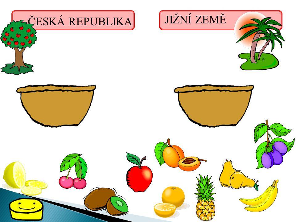 ČESKÁ REPUBLIKA JIŽNÍ ZEMĚ