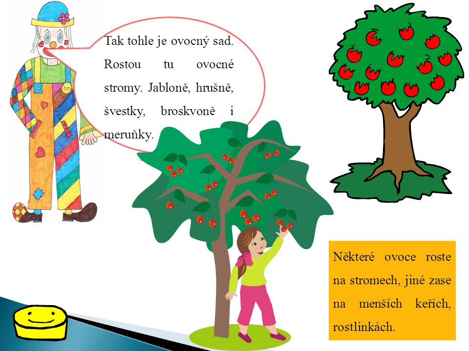Tak tohle je ovocný sad. Rostou tu ovocné stromy. Jabloně, hrušně, švestky, broskvoně i meruňky. Některé ovoce roste na stromech, jiné zase na menších