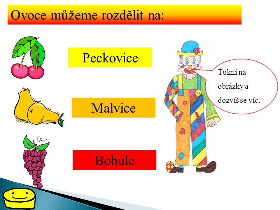 Ovoce můžeme rozdělit na: Peckovice Malvice Bobule Ťukni na obrázky a dozvíš se víc.
