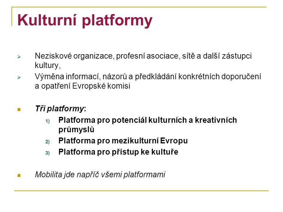 Kulturní platformy  Neziskové organizace, profesní asociace, sítě a další zástupci kultury,  Výměna informací, názorů a předkládání konkrétních dopo