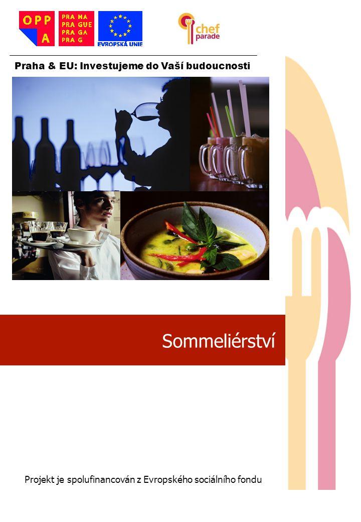 32 Degustace vína 32 Praha & EU: Investujeme do Vaší budoucnosti Projekt je spolufinancován z Evropského sociálního fondu Degustovat neznamená pít Smyslem degustace vína je senzorická – smyslová analýza vína; poznání a vyhodnocení jeho charakteru a kvality; případně porovnání kvality řady vín mezi sebou.