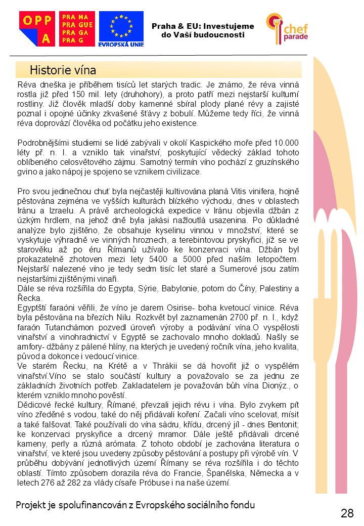 28 Historie vína 28 Praha & EU: Investujeme do Vaší budoucnosti Projekt je spolufinancován z Evropského sociálního fondu Réva dneška je příběhem tisíc