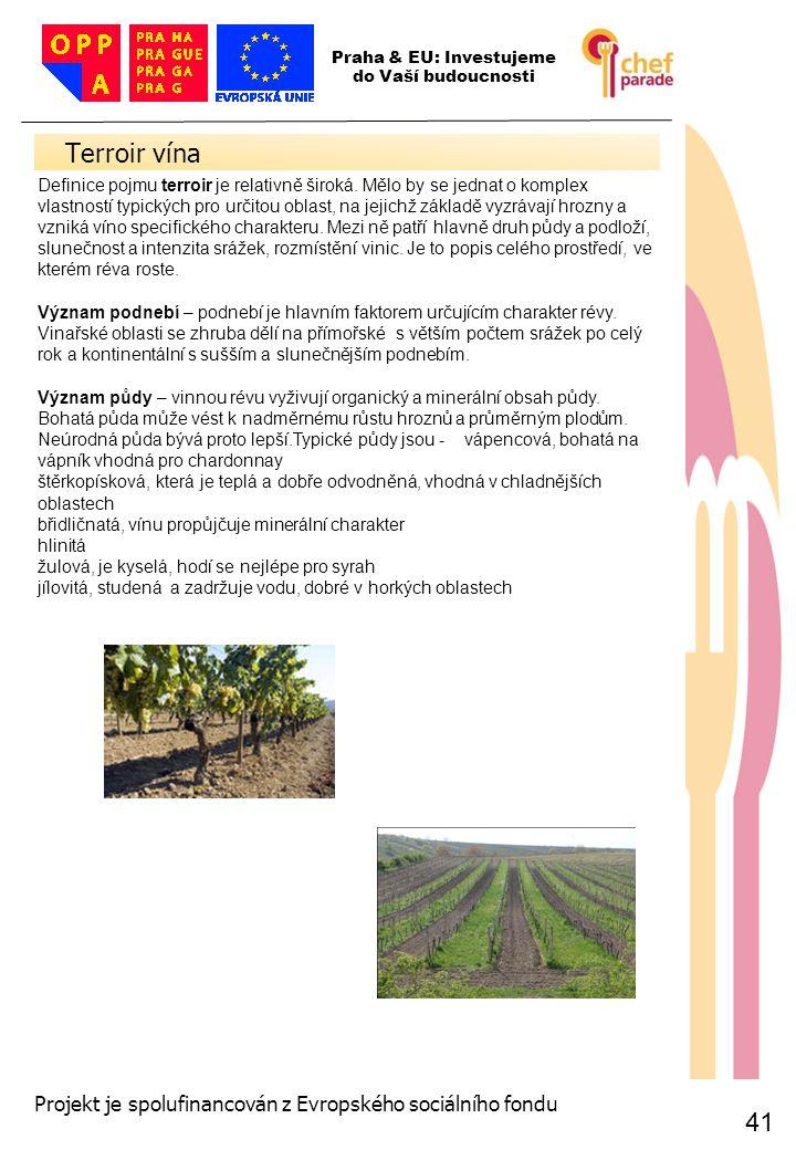 41 Terroir vína 41 Praha & EU: Investujeme do Vaší budoucnosti Projekt je spolufinancován z Evropského sociálního fondu Definice pojmu terroir je rela