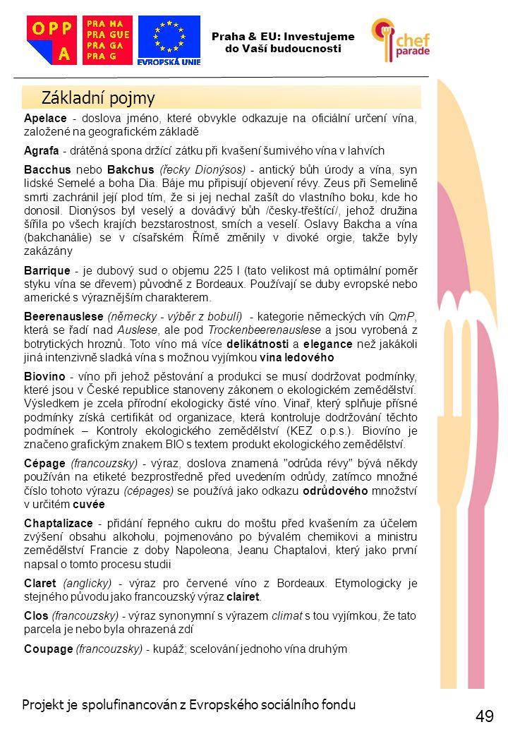 49 Základní pojmy 49 Praha & EU: Investujeme do Vaší budoucnosti Projekt je spolufinancován z Evropského sociálního fondu Apelace - doslova jméno, kte