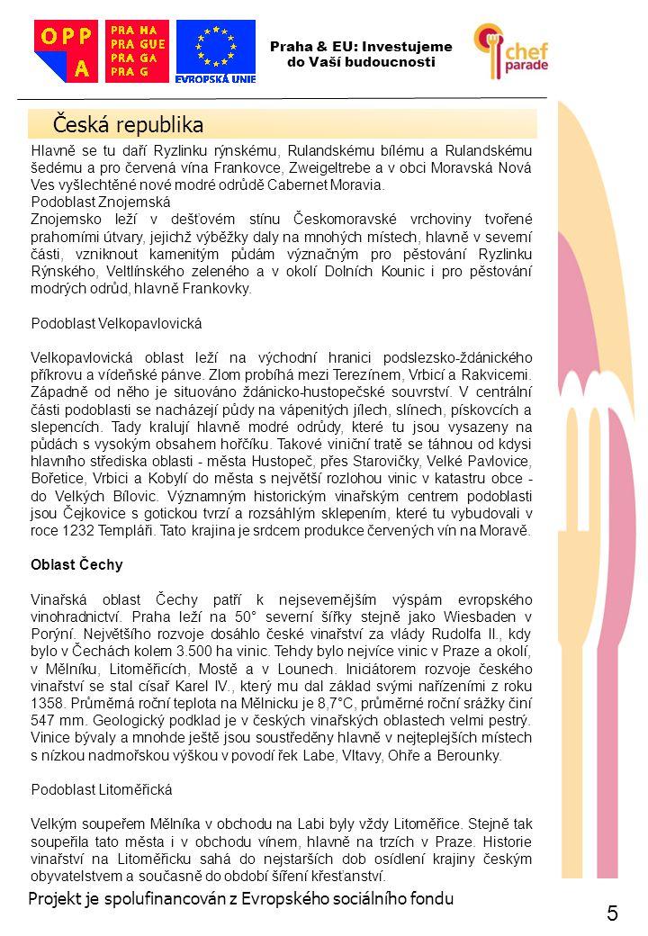 5 5 Česká republika 5 Praha & EU: Investujeme do Vaší budoucnosti Projekt je spolufinancován z Evropského sociálního fondu Hlavně se tu daří Ryzlinku