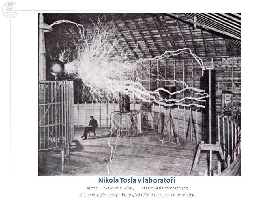 Nikola Tesla v laboratoři Autor: Dickenson V.