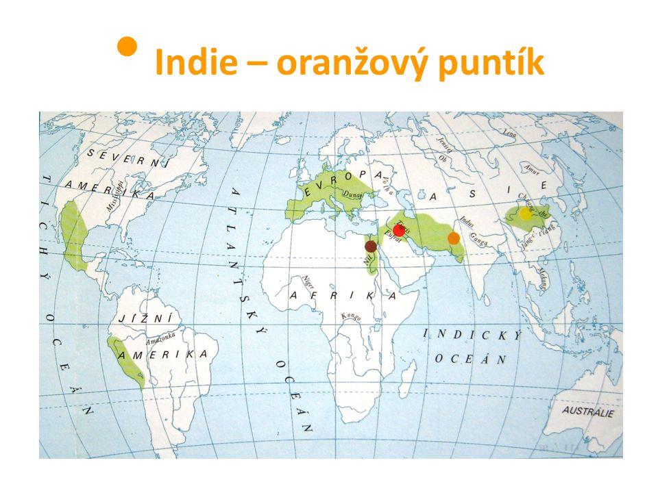 Indie – oranžový puntík