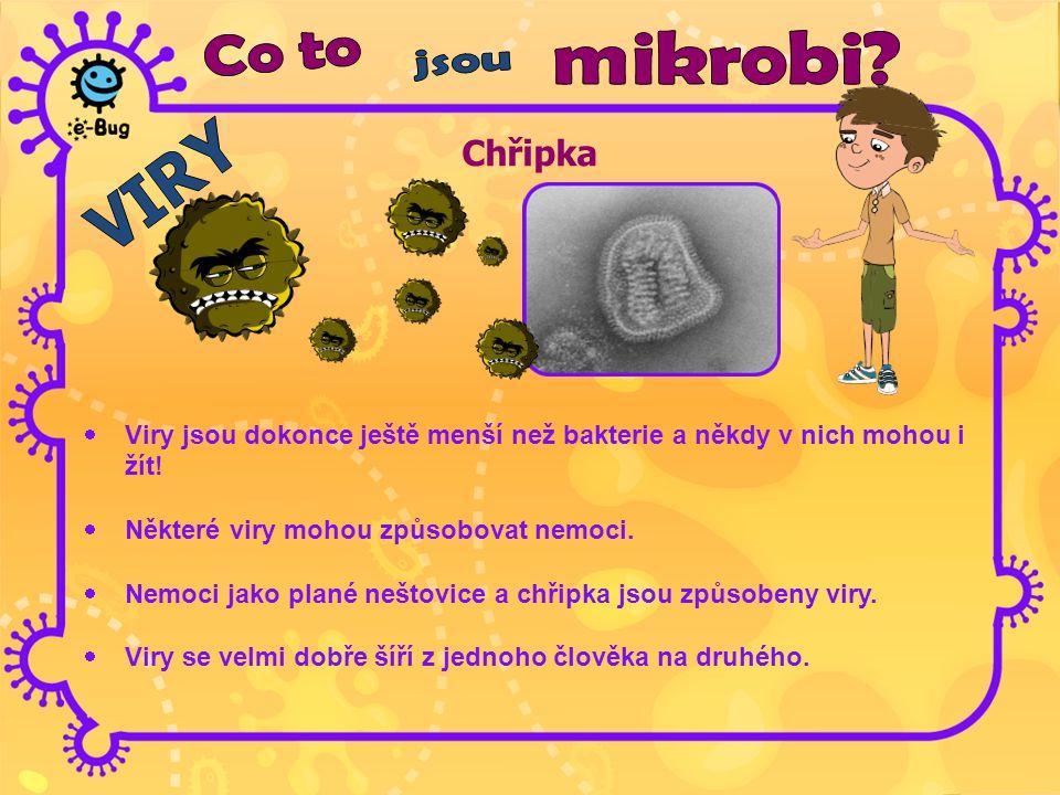 Chřipka  Viry jsou dokonce ještě menší než bakterie a někdy v nich mohou i žít!  Některé viry mohou způsobovat nemoci.  Nemoci jako plané neštovice