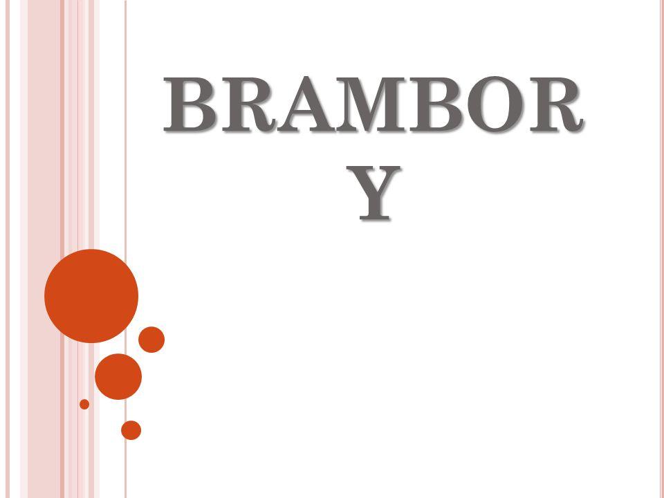BRAMBOR Y