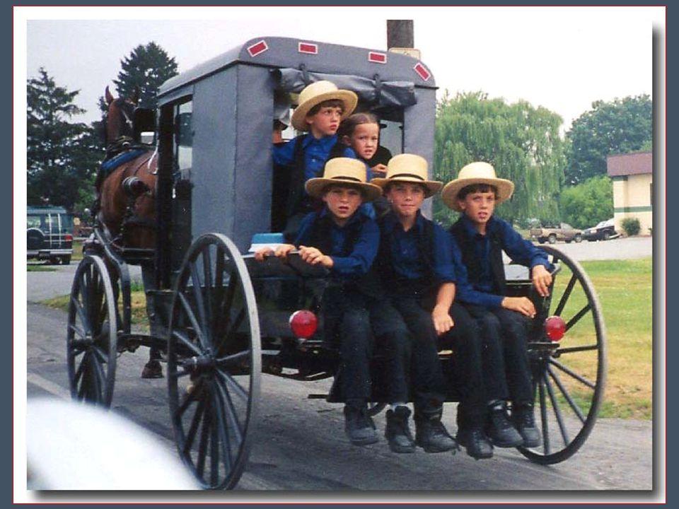 Amish jsou shromážděni v malých komunitách. Komunita spojuje asi 35 až 40 rodin o 250 až 300 osobách a všichni uznávají autoritu jednoho patriarchy. Z