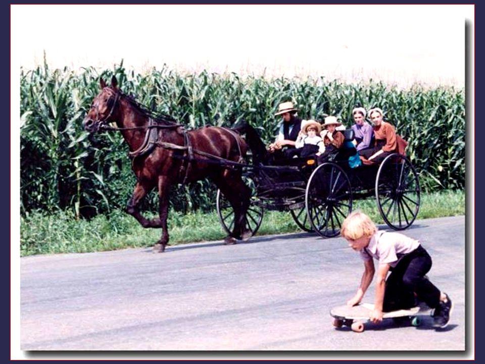 Systém je téměř soběstačný. Například Amish odmítají sociální zabezpečení, považují ho za nežádoucí, aby nebyli omezováni, ani zastoupeni státem. Napr
