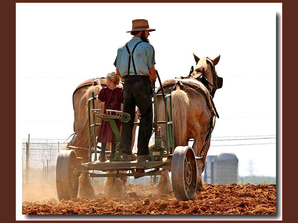 Jejich zaměstnání je hlavně řemeslo a zemědělství. Své nástroje mají zděděné po předcích, ale jsou pevné, udělané s přesností, dovedností a trpělivost